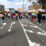 伊勢原市の道灌祭り