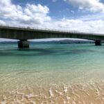 沖縄に行くと花粉症がリセットされる仮説