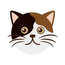 厚木の弁護士事務所-猫1