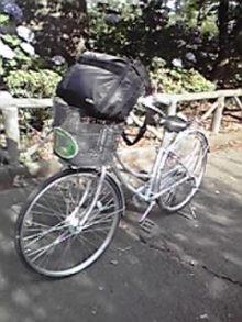 厚木の弁護士事務所-ぐるりん小田原自転車